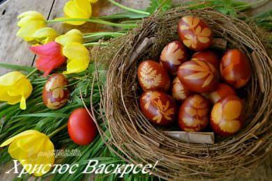 Честитка предсједника Савеза Срба из региона Миодрага Линте поводом прославе највећег хришћанског празника Васкрса