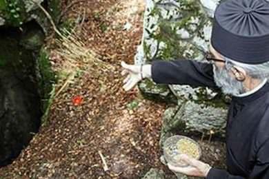 Линта протестује због начина вађења посмртних остатака Срба из Шаранове јаме на Велебиту