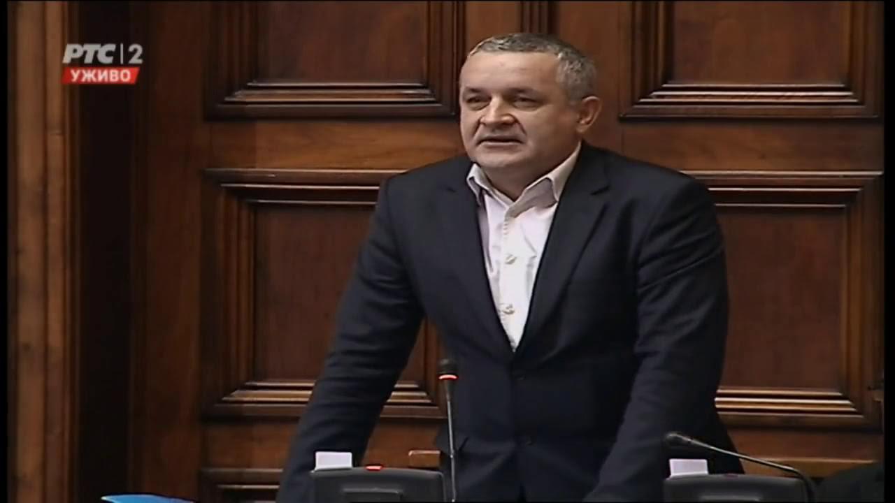 Миодраг Линта у Скупштини Србије говорио о великом потенцијалу српске дијаспоре