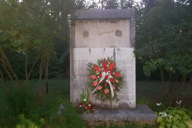 Дан ослобођења и народни збор у Бовићу